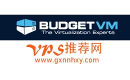 美国vps BudgetVM 2cpu/2g/150g ssd/100mbps/4TB/ddos防护 $9.99/月