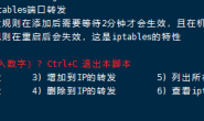基于 iptables 转发教程(TCP+UDP)